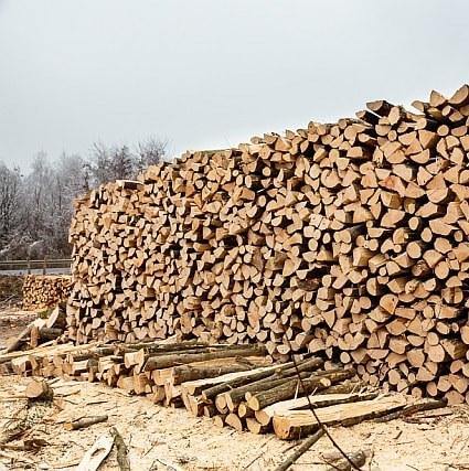 Metarska drva